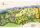 Sea Horse Ranch Villa Sirena Map